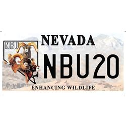 NBU Nevada License Plates (NBU20 and 20NBU)