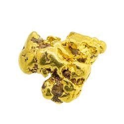 9.0 Gram Gold Nugget