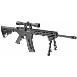 "Smith & Wesson, M& P15-22 Sport II, Semi-automatic, AR-15, 22 LR, 16.5"" Barrel"