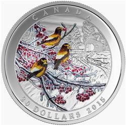 2015 - $20 Weather Winter Freeze .9999 Fine Silver.