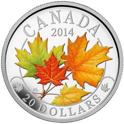 2014 $20 Fine Silver Coin - Majestic Maple Leaves with Coloured Enamel.