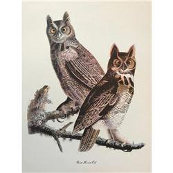 c1946 Audubon Print, Great Horned Owl
