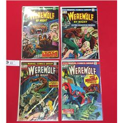 Werewolf By Night Comics #12,13,14,15 All in Comic Bags and On Cardboard