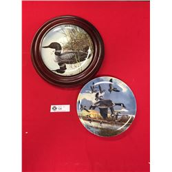 2 Decorative Canada Geese Plates 1 in a Wooden Frame