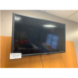 Proscan Wall Mount Television