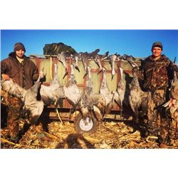 Texas Sandhill Crane Hunt for 2