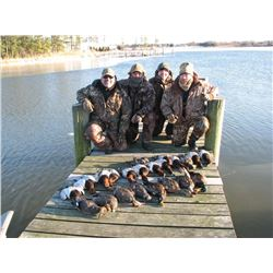 Chesapeake Duck & Goose Hunt for Four Hunters