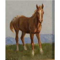 "Peters, Les, oil on board, The Colt, 7"" x 5"""
