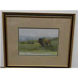 Sander, Tom, Buffalo, watercolor, 12.5x8.5