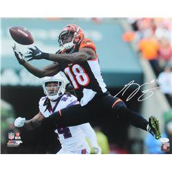 A.J. Green Signed Cincinnati Bengals 16x20 Photo (JSA COA)
