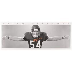 "Brian Urlacher Signed Chicago Bears ""Bear Hug"" 15.75x40 Photo (Beckett COA)"