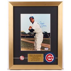 Ernie Banks Signed Chicago Cubs 14x17.5 Custom Framed Photo Display with Pin  Patch (PSA COA)