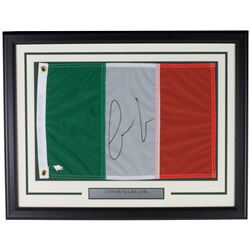 Conor McGregor Signed 20x26 Custom Framed Irish Flag Display (Fanatics Hologram)
