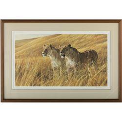 "Robert Bateman's ""African Amber- Lioness Pair"" LE Print"