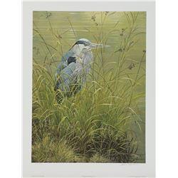 "Robert Bateman's ""Grassy Bank - Great Blue Heron"" L.E."