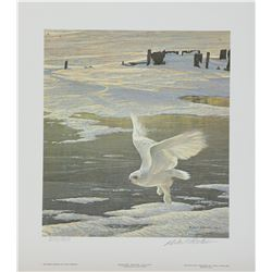 "Robert Bateman's ""Winged Spirit - Snowy Owl"" L.E. Print"
