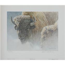 "Robert Bateman's ""Wood Bison Portrait"" L.E. Print"