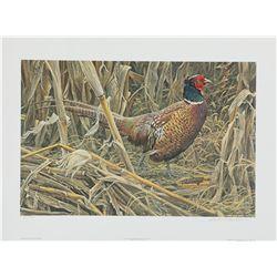 "Robert Bateman's ""Strutting - Ring-Necked Pheasant"" LE"