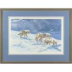 "John Seerey-Lester's ""Racing The Storm - Arctic Wolves"""
