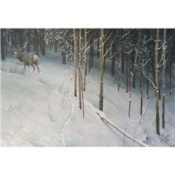 "Robert Bateman's ""Forest Trail Mule Deer"" LE Canvas"