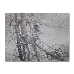 "Robert Bateman's ""Ghost of The North - Great Gray Owl"""