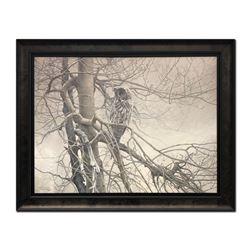 "Robert Bateman's ""Ghost Of The North- Great Grey Owl"""