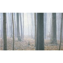 "Robert Bateman's ""Hardwood Forest - While-Tail Deer"""