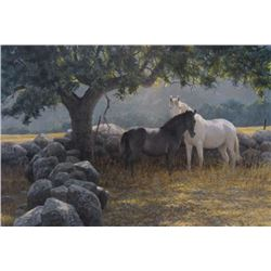 """Robert Bateman's """"In The Field - Mare and Foal"""" L.E."""