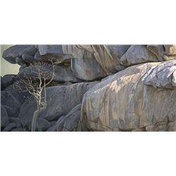 "Robert Bateman's ""Kopje Lookout - Leopard"" LE Canvas"