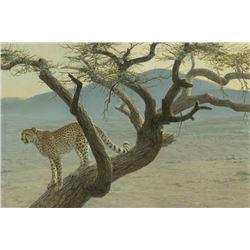"Robert Bateman's ""Lewa Cheetah"" LE Canvas"