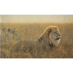 "Robert Bateman's ""Lions in the Grass"" LE Canvas"