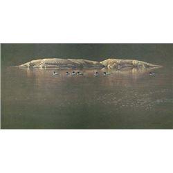 "Robert Bateman's ""Loon Gathering At Big East"" LE Canvas"