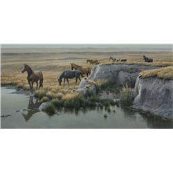 "Robert Bateman's ""Mustang Country"" LE Canvas"