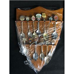 COLLECTOR SILVER SPOONS DISPLAY (VARIOUS SPOONS)
