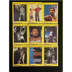 STELLAR '93 BY STAR BASKETBALL CARD LOT