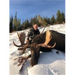 Canadian Shiras Moose Hunt