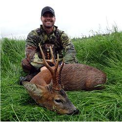 Scotland Roe Deer Hunt