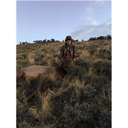 Youth/Adult Cow Elk Hunt in Idaho with Big Lost River Outfitters