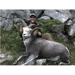 Yukon Stone Sheep/Moose/Grizzly Hunt in Canada with Yukon Big Game Outfitters