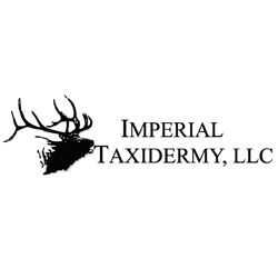 Taxidermy - Deer sized shoulder mount with Imperial Taxidermy