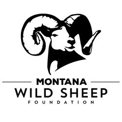 Montana WSF Life Membership and Yeti Cooler