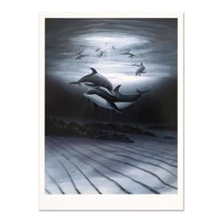 Dolphin Affection by Wyland