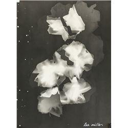 Lee Miller American Modernist Photogram on Paper