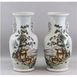 Pair of Chinese Famille Rose Vase Bi Yuanming