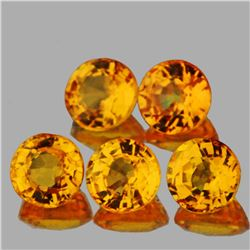 Natural AAA Golden Yellow Sapphire 3.80 MM - VVS