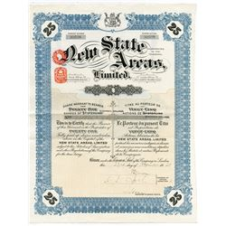 New State Areas, Ltd., 1925 Issued Stock Certificate
