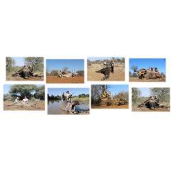 Diekie Muller Hunting Safaris - South Africa
