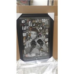 Muhammad Ali (17-051)