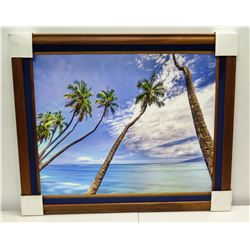 Coconut Tree Twist  by Randy J. Braun, Solid Koa Deluxe Frame, Photographic Image on Canvas 35 3/4