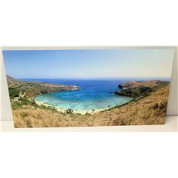 "Photographic Image on Metal, Hanauma Bay Hawaii, Frameless 24"" x 12"""